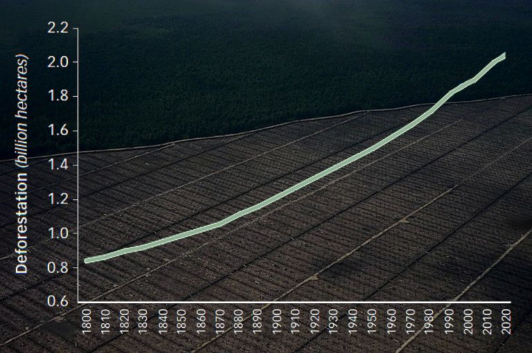 Global Deforestation, 1800-2015